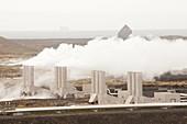 Capturing geothermal steam