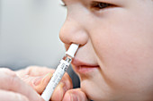 Nasal spray seasonal flu vaccine