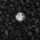 Anthracite and diamond