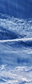 Cirrus clouds and contrails
