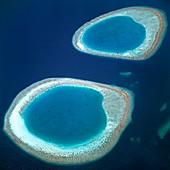Atolls,Ari Atoll,Maldives
