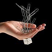 Neodynmium magnets