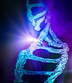 DNA molecule,illustration