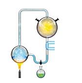 Miller-Urey experiment,illustration