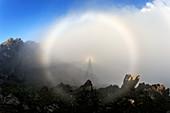 Glory and Brocken spectre,Hawaii