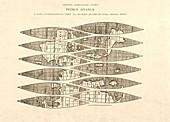 Ingolstadt map gores,1518
