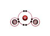 Bond formation in water molecule