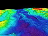 Mid-Atlantic Ridge,3D bathymetric image