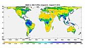 Surface soil moisture,global map