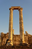 Temple of Apollo,Didyma
