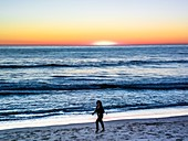 Venice Beach,USA,at sunset