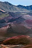 Cinder cones in Haleakala crater