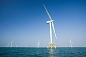 The Ormonde Offshore Wind Farm