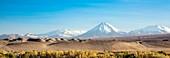 Atacama landscape,Chile