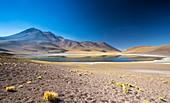 Lake Miscanti,Atacama desert,Chile