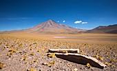 Atacama landscape