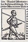 1560 Wild Man homo monkey warrior
