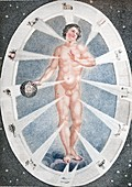 1794 Adam's Creation and the Zodiac man