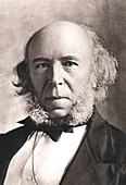 1903 Herbert Spencer Philosopher old age