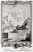 1731 Designs of Noah's Ark
