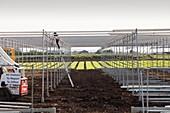 Building greenhouses,Lancashire mossland
