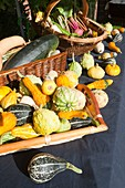 Gourds and produce on a stand