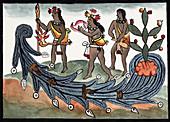 Aztec drought rituals,16th century