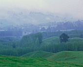 Rain and mist over a landscape of rolling hills