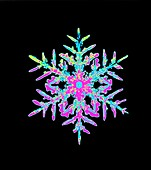 Coloured computer-enhanced image of a sno
