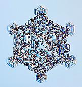 Rimed snowflake