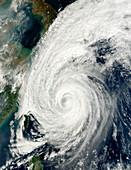 Typhoon Tokage