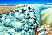 Artwork of a flood caused by glacial dam collapse