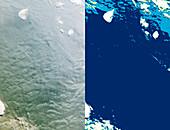 Sastrugi snow patterns,satellite images