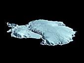 Antarctica in 1998,computer model