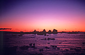 Icerbergs at sunset,Antarctic Peninsula