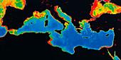 Phytoplankton in the Mediterranean sea
