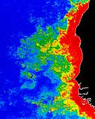 Colour satellite image of coastal water (N.Africa)