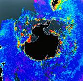 Satellite image of oceans around Antartica