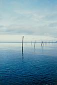 North Sea seascape