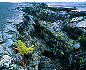 Fractured lava crust caused by volcanic faulting