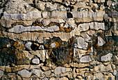 Horizontal strata in a limestone cliff