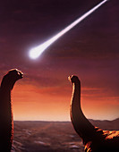 Artists impression of a pair of giant dinosaurs