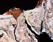 Nile Delta and Sinai Peninsula from space