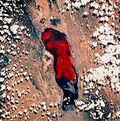 Lake Natron seen from space,STS-55