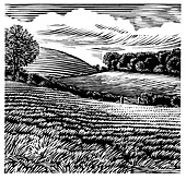 Rural landscape,woodcut