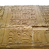 Medical hieroglyphics,Ancient Egypt