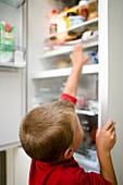 Boy looking in fridge