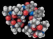 Actinomycin D drug molecule