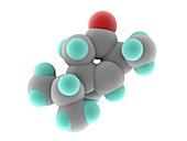 Thujone molecule