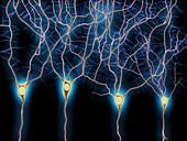 Nerve cells,artwork